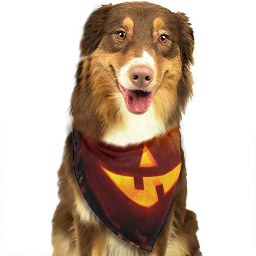 Sitear Halloween Pompoen Lantaarn Duisternis Kaars Hond Kattenhalsdoek Set Geschikt voor Kleine tot Grote Hond Katten