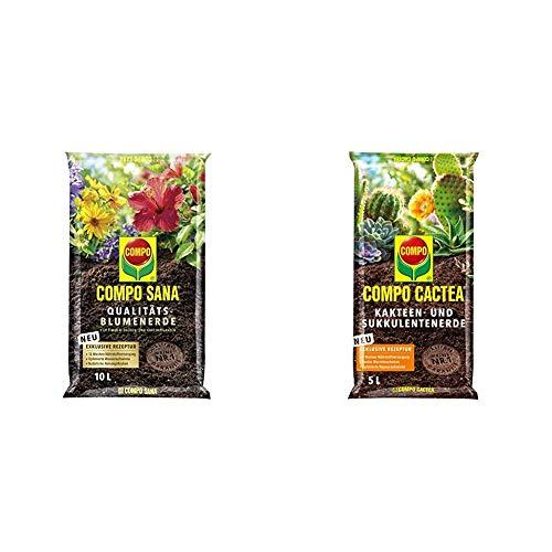 Compo SANA Qualitäts-Blumenerde mit 12 Wochen Dünger, 10 Liter, Braun & CACTEA Kakteen- und Sukkulentenerde mit 8 Wochen Dünger für alle Kakteenarten und dickblättrige Pflanzen, 5 Liter
