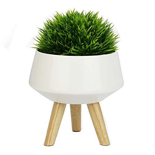 Cache-pot en céramique | Support pour plantes naturelles d'intérieur | Présentoir de faux, plantes succulentes et cactus | Pots de fleurs de bureau | Jardinière Maison Blanche | M&W