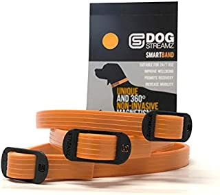 DOG Streamz Magnetic Collar Smart Band, up to 55cm (Orange)   Natural Pain Relief and Recovery for Dogs   Ideal for Arthritis Pain, Inflammation, Rehabilitation and Wellbeing