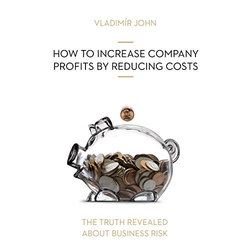 How to increase company profits by reducing costs (The truth revealed about business risk) Titelbild