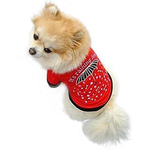 Angelof Rouge Coton ÉTé Pet Puppy Dog Cat Pet Vest T Shirt Petits Chiens