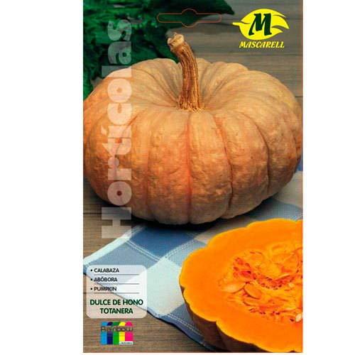 Calabaza Dulce de Horno 12x19 cm Mascarell Semillas