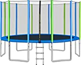 Merax 16FT Trampoline with Safety Enclosure Net, Ladder, Trampoline for Kids (Blue Without Basketball Hoop)