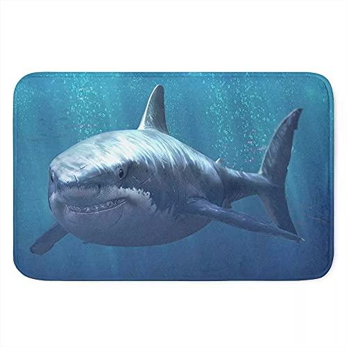 Soft Hallway Entrance Welcome Mat Shark Dolphin Blue Doormat for Bedroom Kitchen Dorm Funny Indoor Small Non Slip Rug Cabin Doorway Front Door Mat