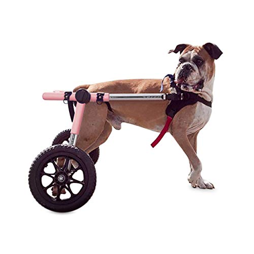 Walkin' Wheels Dog Wheelchair - for Large Dogs...