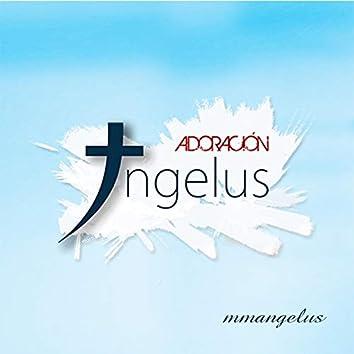 Angelus adoración - Insondable amor