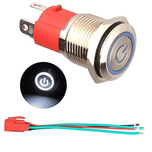 GUUZI 220V / 15A Interruptor de Botón de Enclavamiento NO, Impermeable Luz LED Blanca Iluminada 19mm Botón de Encendido de Metal con Cable de Enchufe