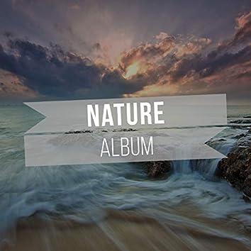 Calm International Nature Album