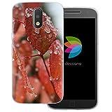 dessana Coque de protection transparente pour Motorola Moto G4 Plus Motif feuilles givrées