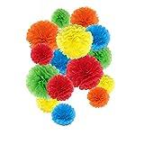 Pompones de papel de seda, flores de papel para decoraci├│n de fiestas, decoraci├│n de boda y cumplea├▒os - 15 piezas de 20, 25 y 35 cm (colores arco iris)