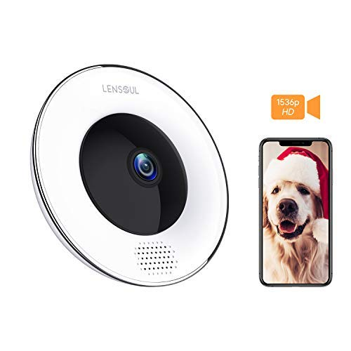 Security Camera,3 Mega-Pixel Wireless IP Camera 360 Degrees 2.4GHz Fisheye Camera Built in Two-Way Audio