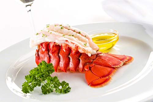 Maine Lobster Now  Maine Lobster Tails 4oz  5oz 4 Tails