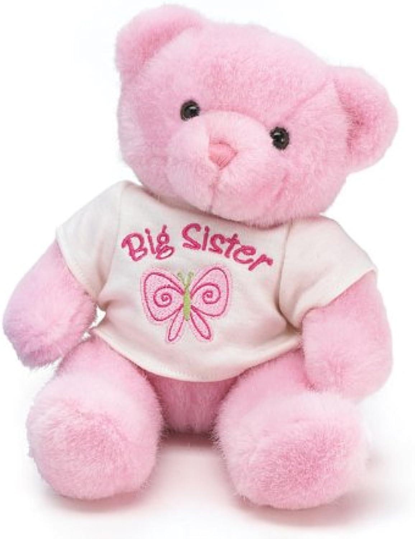Burton & Burton Große Schwester Rosa Plüsch Bär tolle Geschenkartikel für die neue große Schwester B003391H52 Spielzeugwelt, glücklich und grenzenlos | Förderung