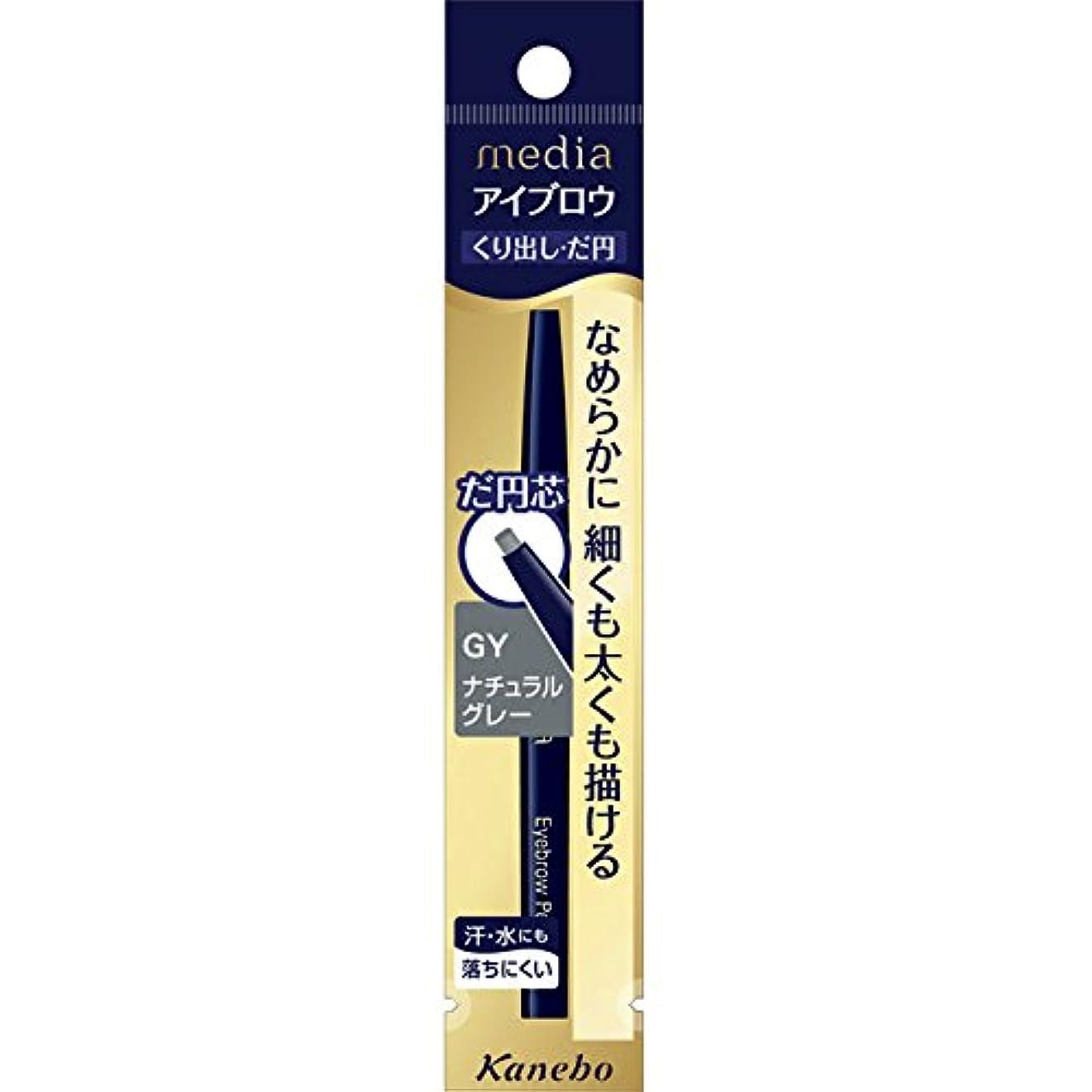 狂った使役同化する【カネボウ】 メディア アイブロウペンシルAA(だ円) GY