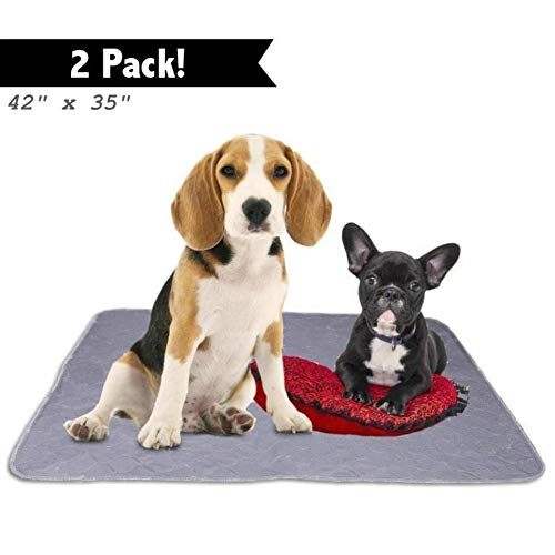 Washable Reusable Pee Pads for Dogs | XL (35' x 42') 2-Pack | 100% Waterproof & Extra Absorbent | Large Non-Slip Puppy Pads | Pet Training & Housebreaking | Incontinence & Whelping Solution