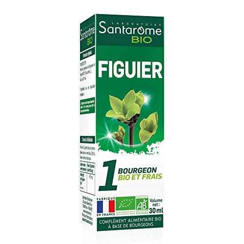 Santarome Bio Figuier Flacon Pipette 30 mL