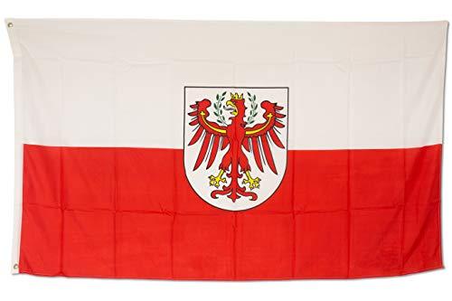 SCAMODA Bundes- und Länderflagge aus wetterfestem Material mit Metallösen (Südtirol) 150x90cm