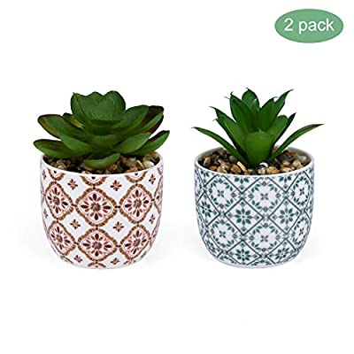 karlliu Artificial Plants Mini Succulent Flowers in Ceramic Pot– Set of 2