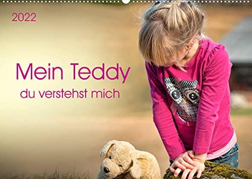 Mein Teddy - du verstehst mich (Wandkalender 2022 DIN A2 quer)