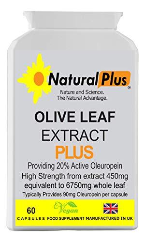 Vegan Olive Leaf Extract 20% Active Oleuropein 60 Capsules £10.00