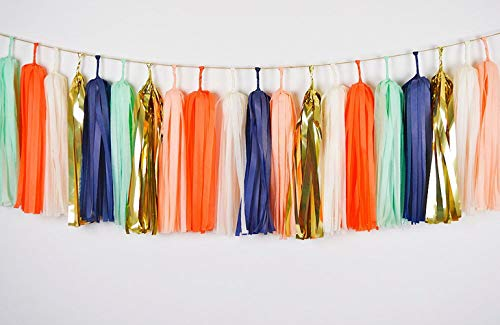 Tissue Paper Tassel DIY Party Garland Decor for All Events & Occasions ,30 Tassels Per Package