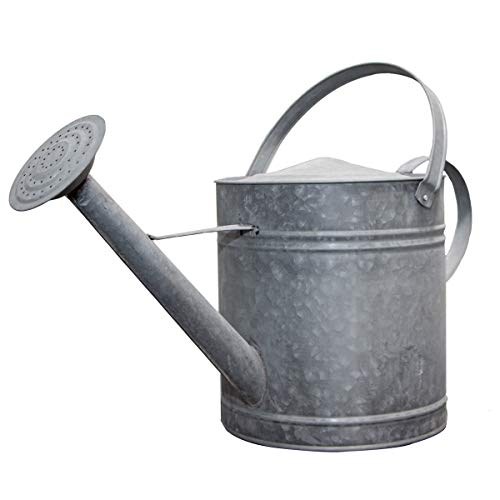 Antikas - Regadera de zinc, XL, color gris plateado, jarra decorativa, bancal de flores.
