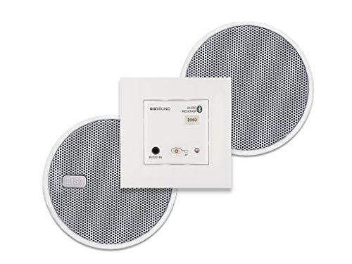 Eissound Bluetooth IN-Wall-Modul mit 2X 2,5