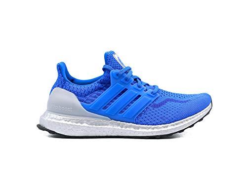 Zapatillas Adidas Ultraboost 5.0 DNA X NASA Blue/Silver Size 42