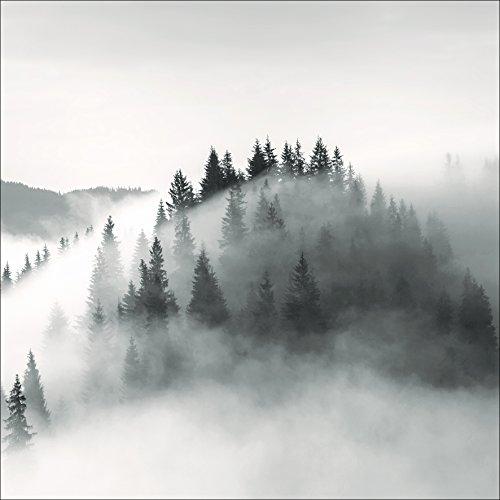 Pro-Art-Bilderpalette Light White Trees Glas-Art, bunt, 80 x 80 x 1.5 cm