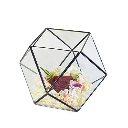 Planta Geométrica Terrario Duradera de Cristal Claro de dodecaedro geométrico terrario Decora for Suculento, Tillandsia, sostenedor de Vela (Color : Black, Size : 26X24X22.5CM)