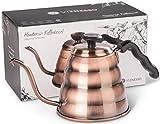 Bouilloire en Inox VIENESSO pour Thé et Café avec Thermomètre Intégré pour une...