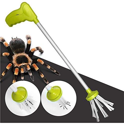 Dongbin pour Les Araignées De Lutte Contre Les Parasites, Critter Guêpes, des Scorpions, des Cafards, Punaises Puantes, Mante, Insectes, Receveur Sauterelles,Gris