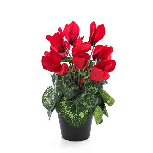 artplants.de Set di 2 x Ciclamino Artificiale Heidi in Vaso, 12 Fiori, Rosso, 25cm - 2 Pezzi di Pianta Decorativa/Ciclamino Finto