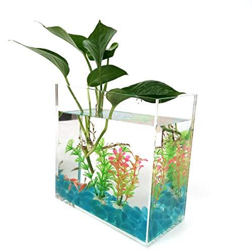 Acryl Wandgemonteerde goudvistank Creatieve transparante aquarium Plexiglas cilinder Mini aquarium
