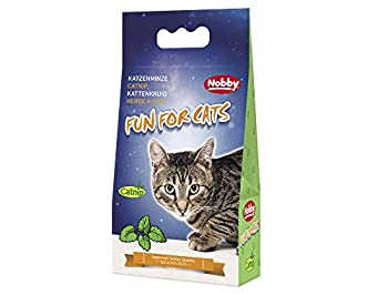 Nobby Herbe à Chat pour Chat 25 g