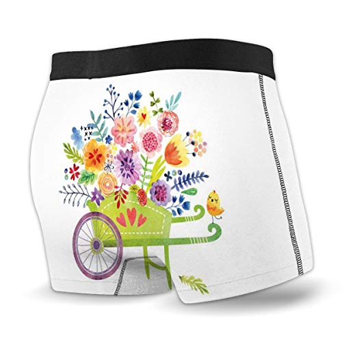 Men's Boxer Briefs,Wheelbarrow Full of Flowers Botanical Gardening Plants Agriculture Watercolor Art,XL