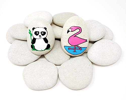 Capcouriers Rocks for Painting 20 Painting Rocks for Rock Painting About 2 inches in Length