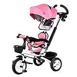 Triciclo Trike Cochecito de Cochecito de bebé Trolley, Bicicleta Triciclo para niños Bebé Plegable de 1-6 años de Edad Cochecito de carruaje (Color: Azul) (Color : Pink)