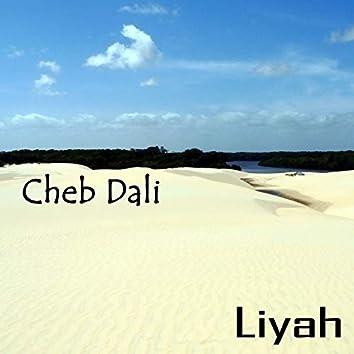 Cheb Dali, Liyah