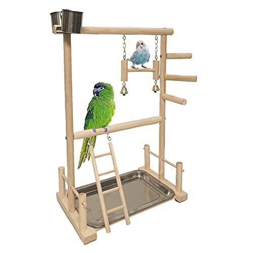 Pájaro Parrot patio pájaro gimnasio jaula juego pájaro soporte de pájaro atlético juguete soporte escalera con alimentador Copa Juguetes para pájaros Swing masticar juguete