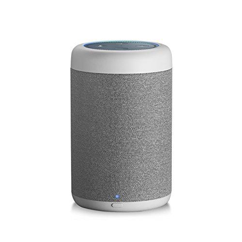 GGMM D6 Portable Speaker for Amazon Echo Dot 2nd Generation, 20W Powerful True 360 Alexa Speakers (DOT Sold Separately)