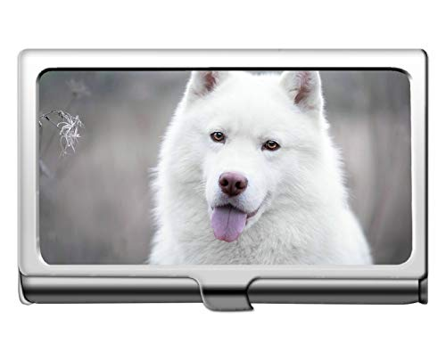 Brieftasche Kreditkartenetui / -halter, Namenskartenhalter für Hunde