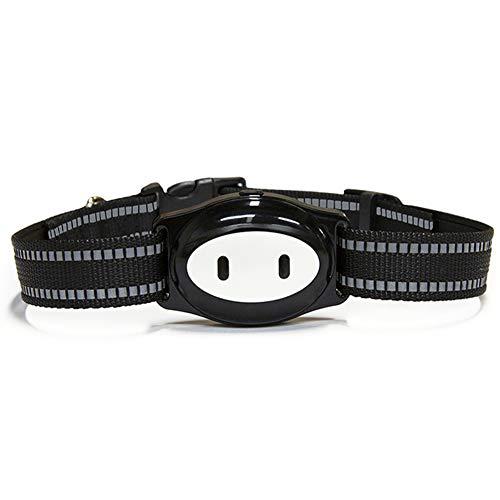CQ EIN Pet Tracker GPS Hund Katze Halsband Wasserdicht USB-Aufladung