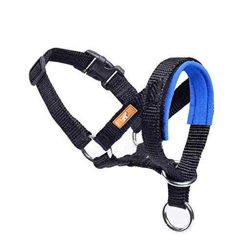 wintchuk Dog Head Collar, Fabric Padded Head Collar for Dogs to Prevent Pulling, Adjustable Dog Head Harness (M, Blue)
