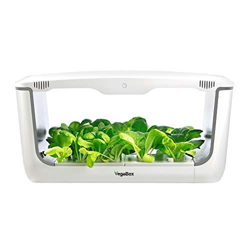 Vegebox™ Home - Indoor Hydroponic Garden Review
