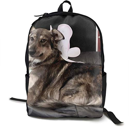 Dog Chair Lie Down Large School Backpack School Bag Bookbag Travel Laptop Backpack Casual Daypack for Kids Students Adult