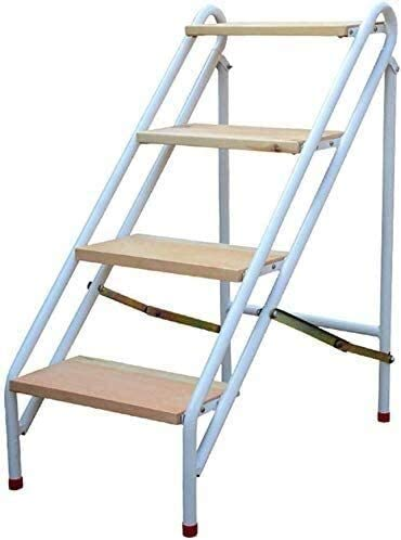 ZHZH Max 81% OFF Easy to Carry 3 4-Step Stool Adults for Indoor Max 66% OFF Kids Ladder