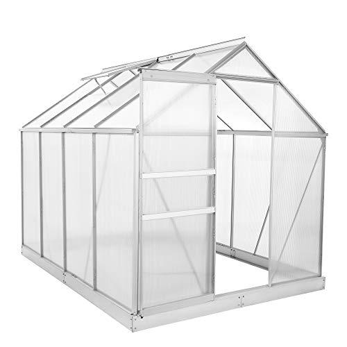 Zelsius Aluminium Gewächshaus für den Garten | inklusive Fundament | 250 x 190 cm | 4 mm Platten | Vielseitig nutzbar als Treibhaus, Tomatenhaus, Frühbeet und Pflanzenhaus