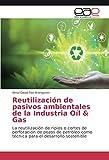 Reutilización de pasivos ambientales de la Industria Oíl & Gas: La reutilización de ripios o cortes de perforación de pozos de petróleo como técnica para el desarrollo sostenible